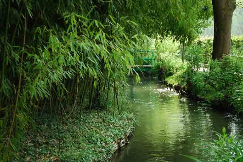 Les lieux voir - La bambouseraie a anduze ...
